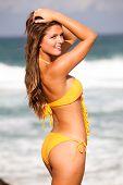 Young Woman In Bikini At The Beach