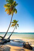 Las Galeras tropical beach in sunset Dominican Republic