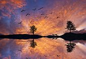 Watchers colored lake