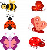 Isolated Insects Vectors, Bee, Buttreflies, Ladybug
