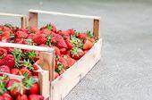 Home Grown Strawberries