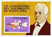 Vintage  Postage Stamp. Felipe Poey.