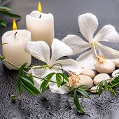 Beautiful Spa Still Life Of Delicate White Hibiscus, Twig Passionflower, Stones With Drops, Candles