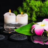 Green Leaf Calla Lily, Plumeria With Drops And Candles On Zen Stones In Reflection Water, Beautiful