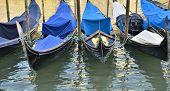 Traditional Gondolas