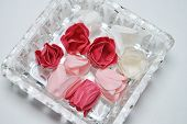 artificial roses on glass plate on white background