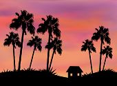 Little House between Palm Trees