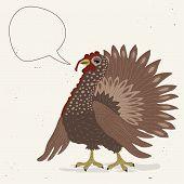 Cute Turkey Cock With Speech Bubble
