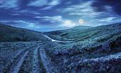 Path Through Highland Meadows At Night