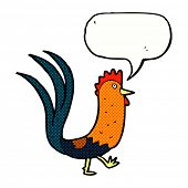 foto of cockerels  - cartoon cockerel with speech bubble - JPG