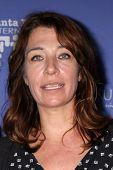 SANTA BARBARA - FEB 5:  Marjolein Beumer at the Santa Barbara International Film Festival - American Riviera Award at a Arlington Theater on February 5, 2015 in Santa Barbara, CA