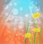 Beautyful camomiles. Vector of spring background with gradient and radiance.