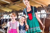 Bavarian mother showing children cows in cow farm