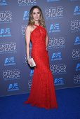 LOS ANGELES - JAN 16:  Emily Blunt arrives to the Critics' Choice Awards 2015  on January 16, 2015 in Hollywood, CA