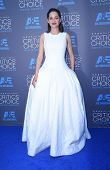 LOS ANGELES - JAN 16:  Marion Cotillard arrives to the Critics' Choice Awards 2015  on January 16, 2015 in Hollywood, CA