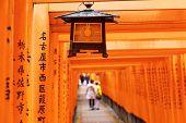 Red Tori Gate at Fushimi Inari Shrine in Kyoto, Japan