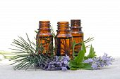 stock photo of essential oil  - Aromatherapy Aroma Oil in Glass Bottles with Lavender Pine and Mint - JPG