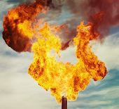 picture of torches  - Flame of an oil torch in the sky close up - JPG