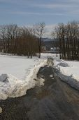 Plowed Winter Lane