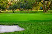 7 Golf Course