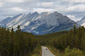 Maligne Road And Colin Range, Canada