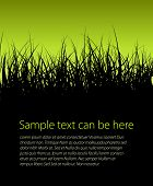 Green vector grass background with place for your text