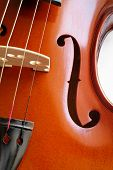 Musical Instruments: Violin Closeup Showing The Bridge (15)