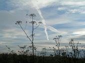 X-Skies