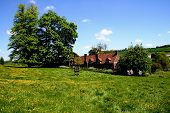 English Rural Scene
