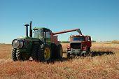 Grain Harvest Time
