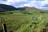 Green Fields Of Ireland