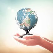 World Environment Day Concept: Human Hands Holding Tree Of Earth Global Over Blurred Nature Backgrou poster
