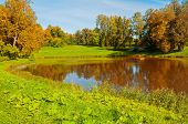 Autumn Sunny Landscape. Forest Autumn Trees At The Bank Of The Small Forest River In Sunny Autumn Da poster