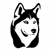 Portrait Of A Dog Of The Siberian Husky Breed. Vector Illustration poster