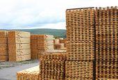 Tábuas de pinho empilhados no pátio de madeira. Concentrar-se em pilhas de primeiro plano.