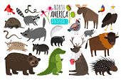 North American Animals. Animal Graphics Of North America, American Bison And Skunk, Cute Moose And L poster