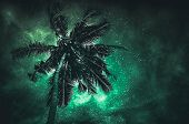 Glowing Of The Milky Way Galaxy In The Night Sky With Many Stars Above Coconut Plam. Beautiful Natur poster