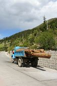 Truck With Logs In China