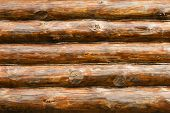 Rustic Pine Log Cabin Wall