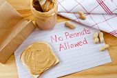 Warning - No Peanuts Allowed