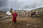 Tsaatan Boy, Dressed In A Traditional Deel, With A Reindeer In A Taiga Of Northern Mongolia poster
