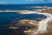 Rocky shore near Kaikoura, South Island, NZ