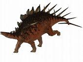 Kentrosaurus-3D Dinosaur