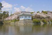 Tower Of Odawara Castle, Japan. National Historic Site