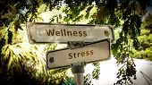 Street Sign The Direction Way To Wellness Versus Stress poster