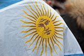 Flag Of Argentina During The Angelus Of Pope Francis I