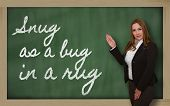 Teacher Showing Snug As A Bug In A Rug On Blackboard