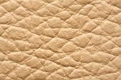 Close Up Genuine Leather