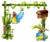 Illustration of two parrots with a wooden mailbox on a white background