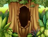 stock photo of hollow point  - Illustration of a hole in a big tree - JPG